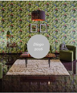 Diego wallpaper catalog photo shooting