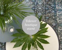 Telenor Boutique CEO Event